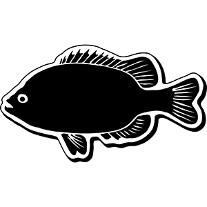 Fish2 - Indoor NoteKeeper&#0153 Magnet